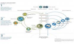 Source: www.ellenmacarthurfoundation.org/circular-economy/infographic
