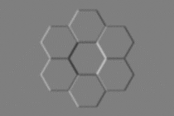 The honeycomb stimulus: some people perceive the central hexagon as convex, others as concave.