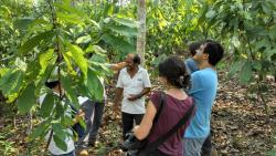 Course participants having a friendly dialog with a farmer about his farming life and the cocoa agroforestry system he has established. Photograph taken by Alan Heinze, September 2014.