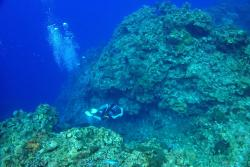 The coral reefs' deep walls protect the Cayman coastline: image credit & copyright: John Turner