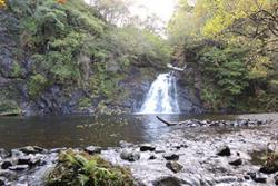 Afon Prysor, Ceunant Llennyrch National Nature Reserve