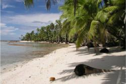 One of the deserted Chagos Islands.