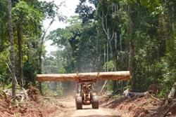 Roads built for logging in the Congo Basin have implications for forest management.: Image courtesy: Fritz Kleinschroth