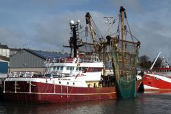 Trawler at the dockside.: Image credit: Jan Hiddink
