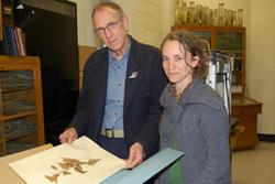 Dr Sophie Williams shows Dr Colin Clubbe some of the samples from the herbarium, which is soon to be digitised.