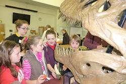 Young visitors to last year's Hidden Worlds Exhibition