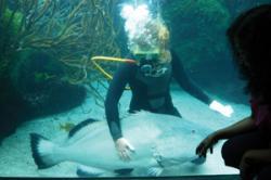 Kate in the aquarium