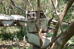 An example of modern hives lying abandoned : image credit: Deborah Amulen