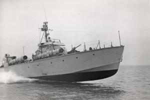 The MTB 539