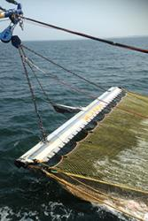 An electric trawler beam and net. : image credit Michel Kaiser
