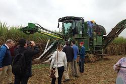The NUCLEUS team observing sugar cane harvesting in Brazil