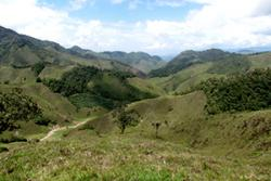 Western Andes forest in varying stages of regeneration, mixed in with cattle pasture.: image:Paul Woodcock