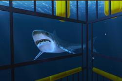 Amongst other things, Ocean Rift will allow you to experience a shark cage!