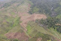 Swidden agriculture in the eastern rainforests of Madagascar. : Sarobidy Rakotonarivo