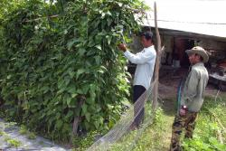 Rural farmers in Cambodia: Provided by our partners