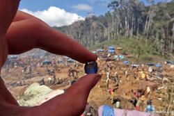 A blue sapphire found at the 'rush' site in October 2016.: Image Credit Rosey Perkins roseyperkins.com