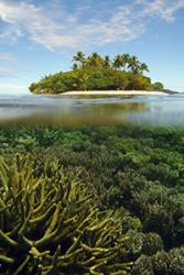 Coral reefs are sensitive to climate change : Image credit Jeffrey Maynard