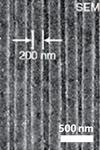 SEM image of Blu-ray disk with 200/100 nm groove and lines (detail).