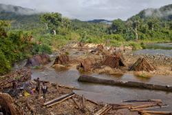 Mae'r gwaith coedwigaeth anghyfreithlon mewn ardaloedd gwarchodedig ym Madagascar wedi niweidio safleoedd o bwys byd-eang. : Hawlfraint Toby Smith