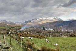 The local landscape highlights the diversity of land uses typical of Wales. In the foreground, sheep graze and open grasslands stretch to the hills. Behind Bethesda, forest plantations can be seen, and beyond, the mountains of Snowdonia.