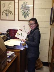 YangXiHerbarium - Yang Xi visit the Treborth Botanic Garden Herbarium