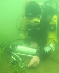 Charlotte diving in Finland