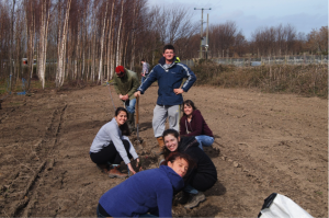 Working as a team, the students ensured the young trees were planted at the correct depth and spacing to ensure their survival and growth