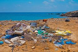Wherever you are in the world, you'll find litter along the shoreline.