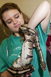 A student handles a non-venomous snake during a previous 'Hidden Worlds' event