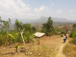 Landscape in Namabya Sub-county, Manafwa District of Eastern Uganda. Photograph taken by Anne Kuria, March 2014.